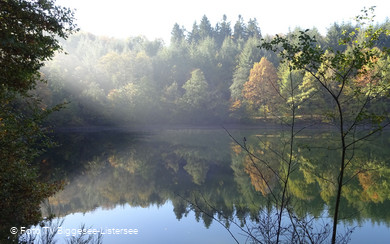 Lister im Morgennebel  Foto TV Biggesee-Listersee.jpg